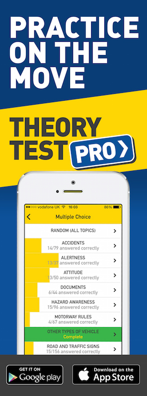 Theory Test Pro in partnership with Bin-The-L-Plates